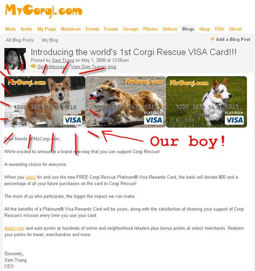 Corgi Rescue Visa card
