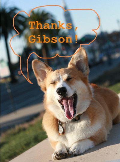 Thanks Gibson!